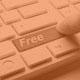 Free 1 Year Domain